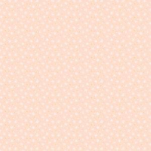 dandelion fluffs peach
